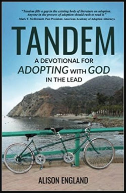 Tandem: A Devotional for Adopting with God in the Lead (Alison England) | Adoption Gifts, Adoption Books