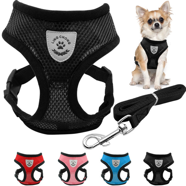 Breathable Mesh Small Dog Pet Harness and Leash Set  Puppy Vest Pink Red Blue Black For Chihuahua - TheUrbanSky