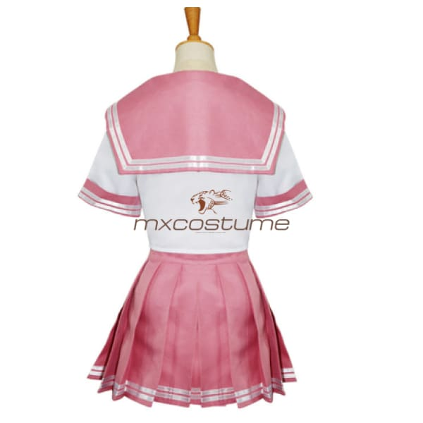 Fate Astolfo Cosplay Pink Costume Costumes
