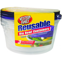 Reusable Big Bowl 3 Containers