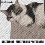 Custom Cat Beloved Family Friend Photograph crochet graphgan blanket pattern; c2c; single crochet; cross stitch; graph; pdf download; instant download