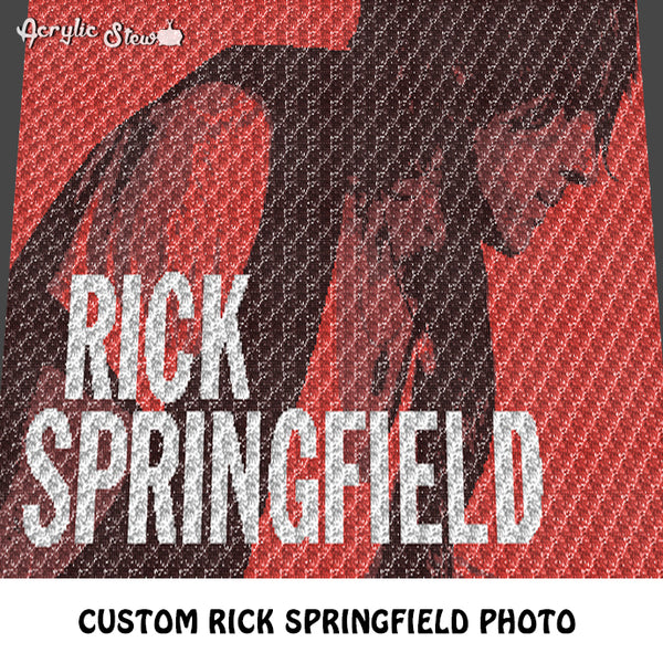 Custom Rick Springfield Concert Ticket Photo crochet graphgan blanket pattern; c2c, cross stitch graph; pdf download; instant download