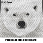 Polar Bear Face Animal Photography Art crochet graphgan blanket pattern; graphgan pattern, c2c, knitting, cross stitch graph; pdf download; instant download