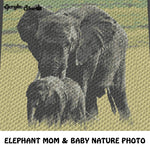 Elephant Mom and Baby Safari Animal Photograph crochet graphgan blanket pattern; graphgan pattern, c2c, knitting, cross stitch; graph chart; pdf download; instant download