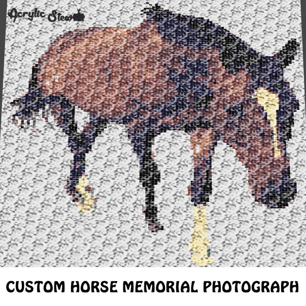 Custom Horse Equine Memorial Photograph crochet graphgan blanket pattern; c2c, cross stitch graph; pdf download; instant download