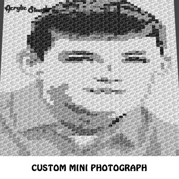 Custom Mini Photograph Black and White Photo crochet graphgan blanket pattern; c2c, cross stitch graph; pdf download; instant download