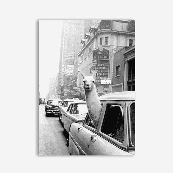 Llama Animal Canvas Poster Black and White Painting and Prints Wall Art Picture Home Decor Trend