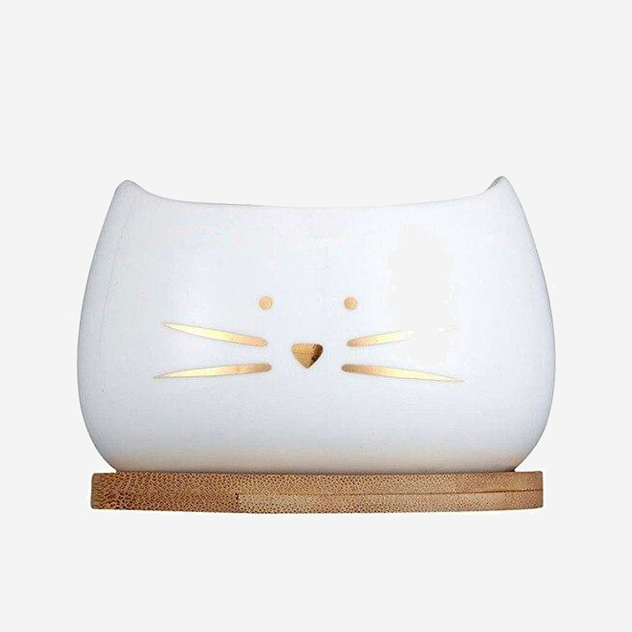 Cute Cat Face Planter Creative White Ceramic Succulent Flower Pot with Bamboo Tray Gardening Pots Trend Gold