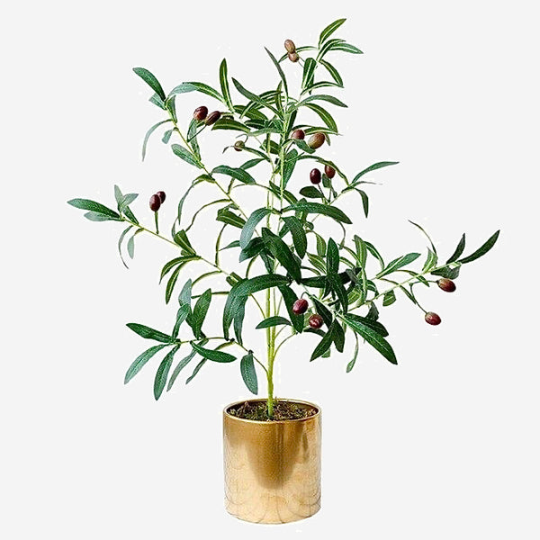 Artificial Potted Olive Tree Simulation plants indoor tropical artificial cloth green olive tree pots ins fake potted desktop office decoration Trend