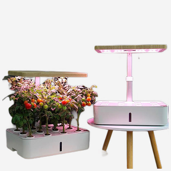 Hydroponic System Box   Intelligent Full Spectrum Grow Light Soilless Cultivation Indoor Garden Planter Grow Lamp Nursery Pots