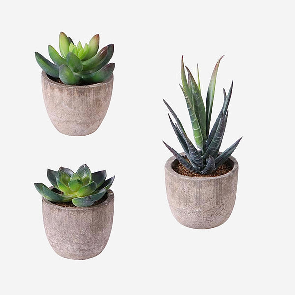 Artificial Potted Cactus 3-Piece   Decorative Faux Simulation Plants With Pots Fake Succulent Plant Trend