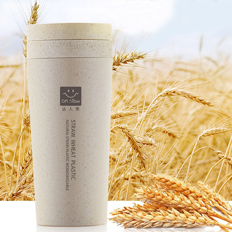 300ml Thermos Flask with Wheat Fiber Cup