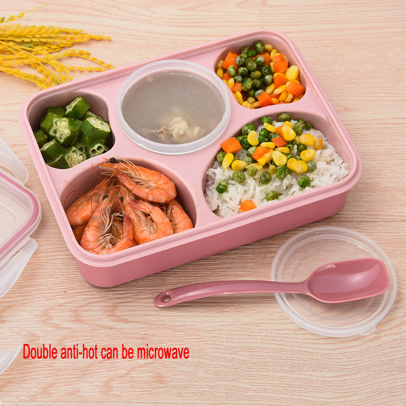 5 Compartment Microwave Bento Lunch Boxes Pink Bento Box Style