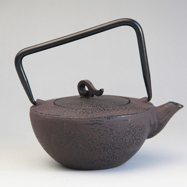 Cast Iron Japanese Tea Kettle Set Japan Black Kung Fu Tea Pot with a stainless Steel Strainer JPN Style