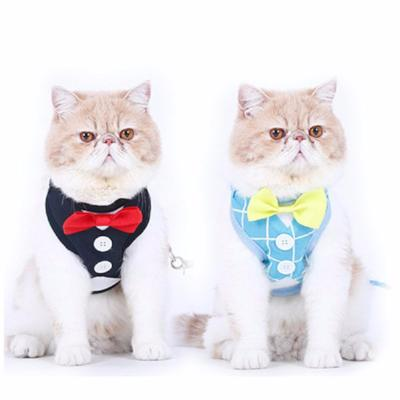Tuxedo Cat Harnesses Set