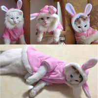New Bunny Rabbit Cat Jacket - Catari Cats