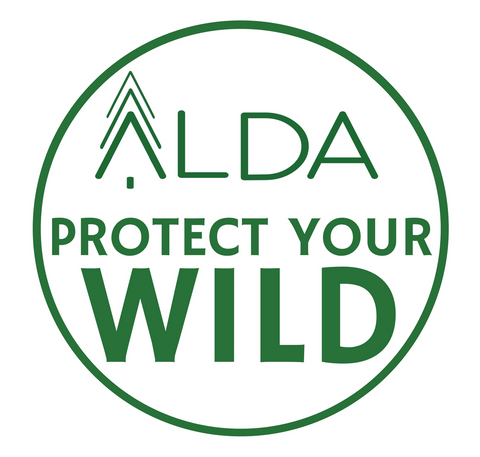 Protect Your Wild Decal
