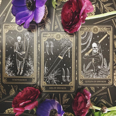Earth signs tarot cards for the new moon