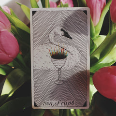 Son of wands tarot card meaning