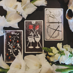 The wild unknown tarot new moon in Leo Fire signs