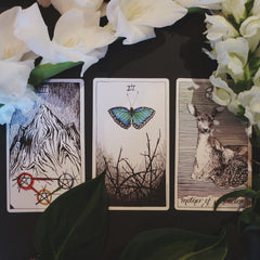 The wild unknown tarot new moon in Leo Earth signs