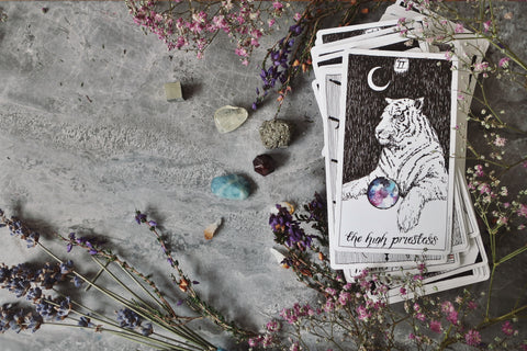 Bonearrow New Moon Tarotscopes The Wild Unknown