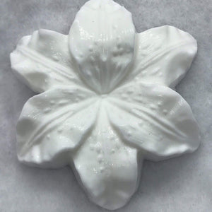 Lily Plastic Hand Mold