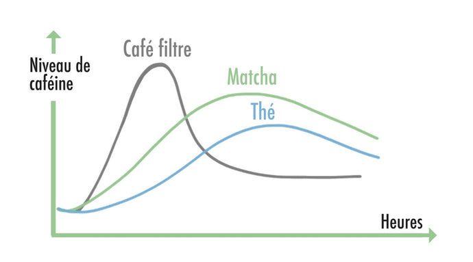 Matcha : How Much Caffeine and How Does It Compare to Coffee ?