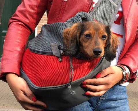 Pet Carrier Shoulder Sling