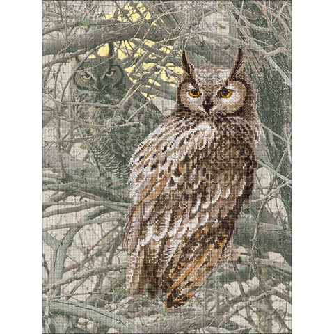 RIOLIS Stamped Cross Stitch Kit 11.75 inch X15.75 inch Eagle Owl (14 Count)