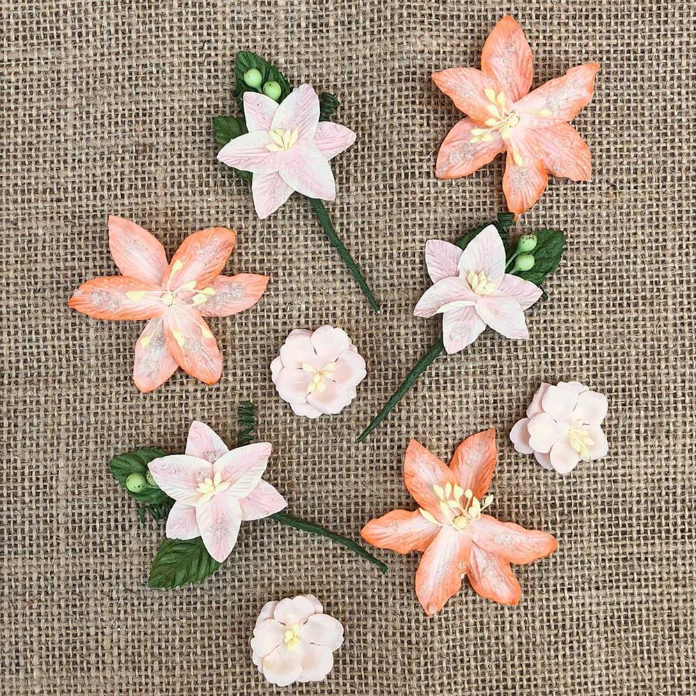 49 And Market Stargazers Paper Flowers 9 pack - Peach Sorbet