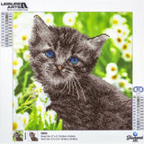 Leisure Arts Diamond Art Intermediate Kit 12 inch X12 inch Kitten