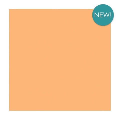 Kaisercraft - 12x12 inch Weave Cardstock 220 gsm - Apricot