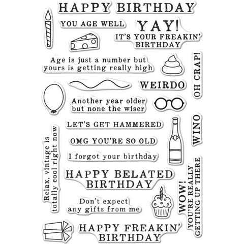 Hero Arts Clear Stamps 4 inch X6 inch Irreverent Birthday Messages