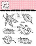 Sweet 'N Sassy Clear Stamps 4 Inch X4 Inch Autumn Leaves