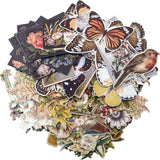 Tim Holtz Idea-Ology Layers Die-Cuts 83 pack Botanical .75 inch X1 inch To 6.5 inch X2 inch