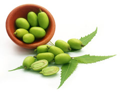 Organic Neem Seed Oil for Skin