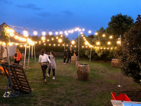 Festoon Lights on Stands
