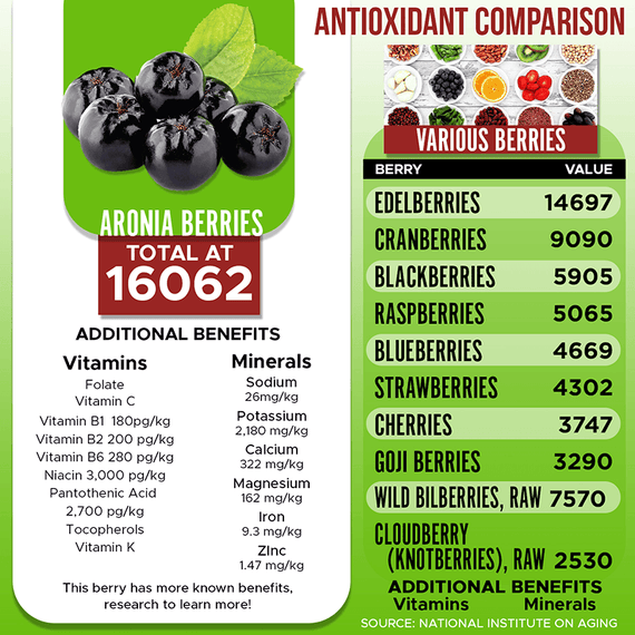 The aronia berry is one of the most antioxidant-rich superfoods in the world. Packed with polyphenols, calcium, iron, and vitamins A, B2, B6, B9, C, E, and more, Aronia Treasure will help manage chronic conditions, arthritis pain and prevent illness.
