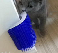 Cat Self Groomer Brush with Catnip - Gadget City Club
