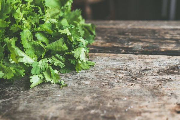 natural-treatments-for-dry-eyes-coriander