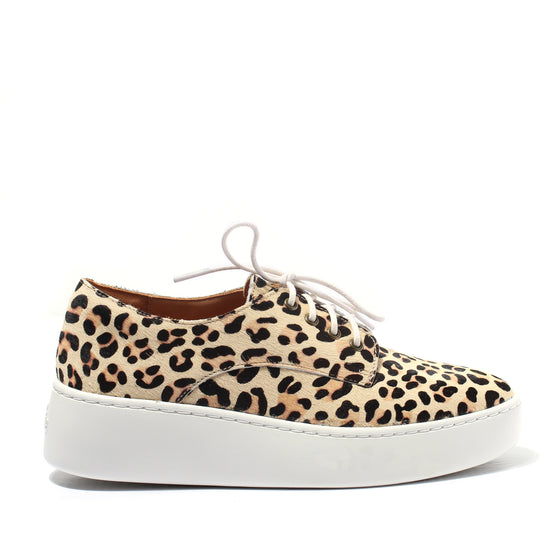Rollie Derby City Camel Leopard | Shop Rollie at Wallace and Gibbs NZ