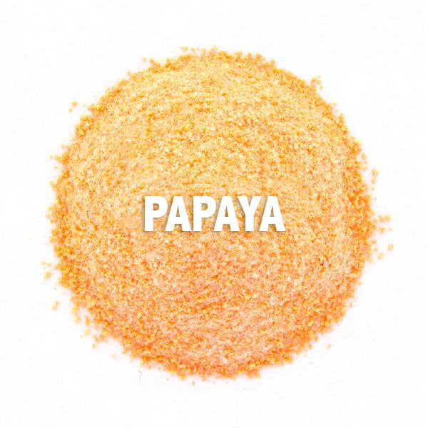 Papaya Powder 1kg