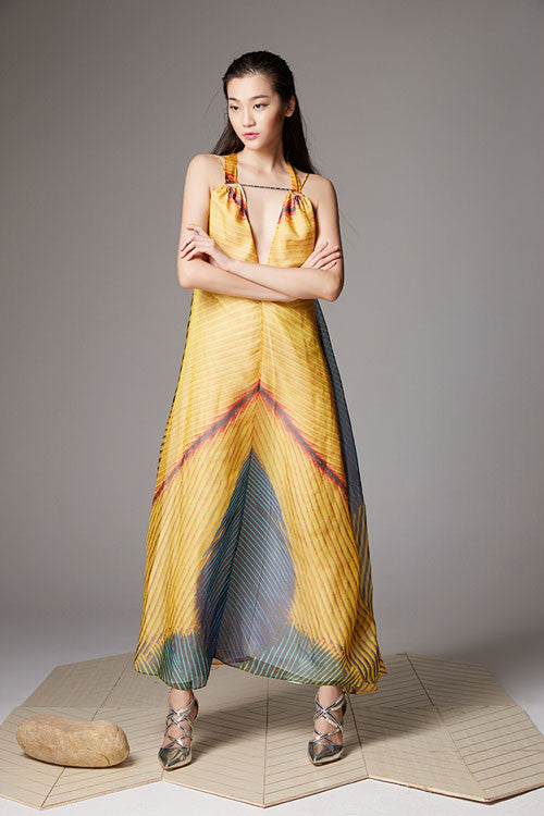 Spaghetti V-neck Trim Maxi Dress