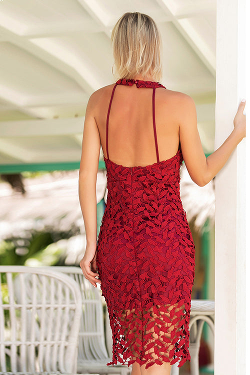 Halter Neck Backless Lace Body-Con Dress