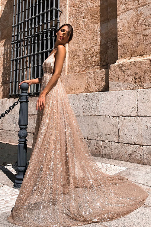 Always Stunning Sequin Plunging Neck Maxi Dress
