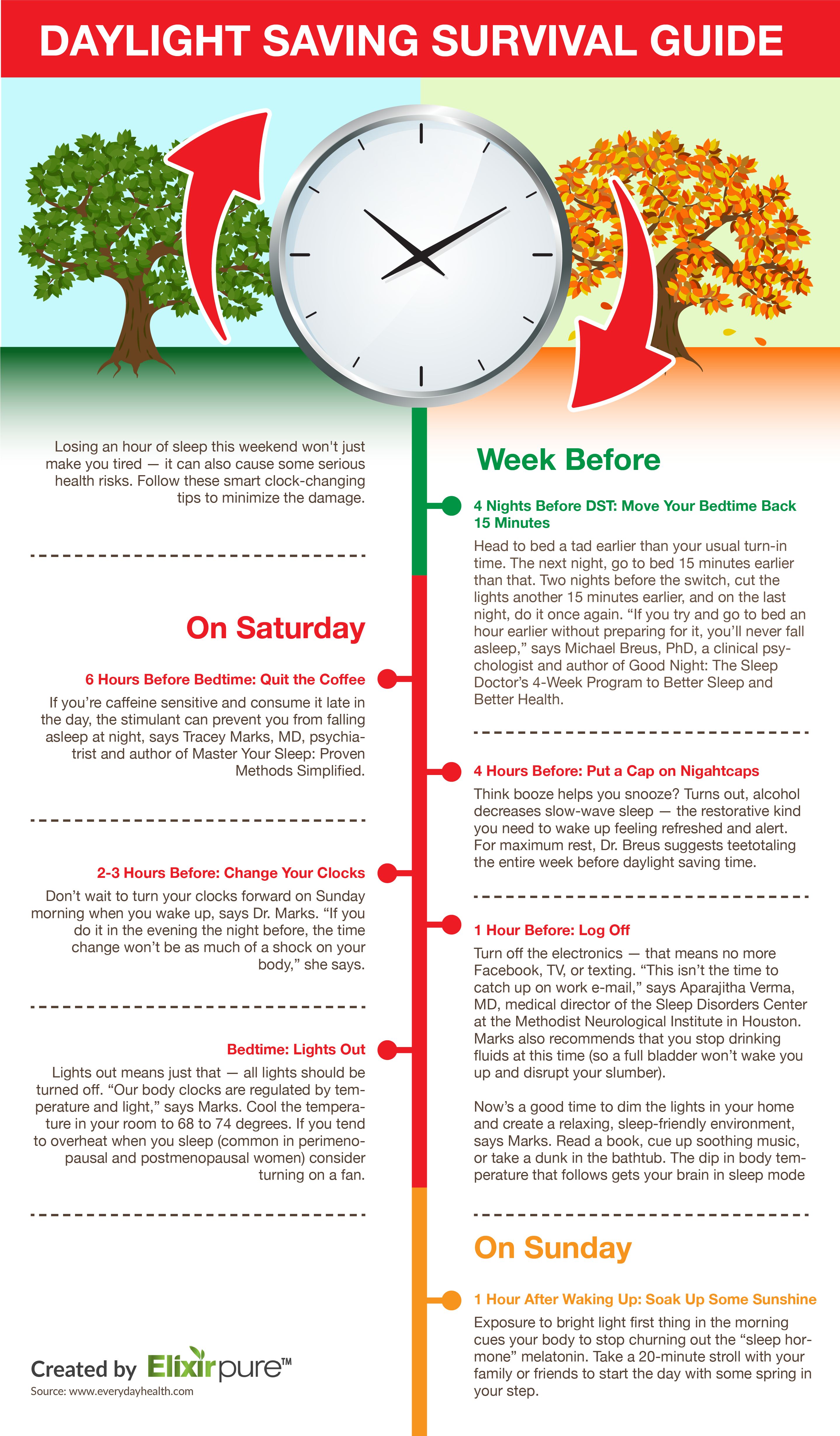 Daylight Saving Survival Guide