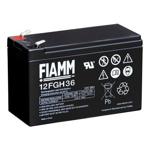 Genuine IAME Battery 12V