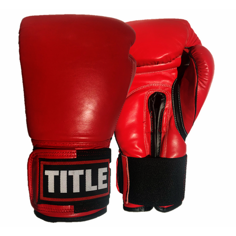 TITLE Boxing Gloves (TSG-12R)