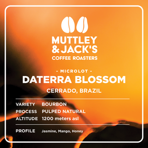 Brazil: Daterra Blossom - Pulped Natural Bourbon